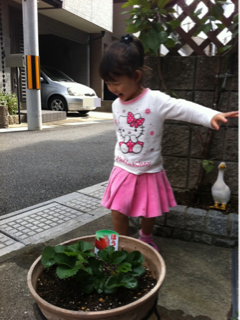 image-20111103080045.png